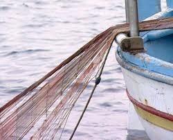 Pesca a strascico, sanzioni amministrative per. 12mila euro: sequestrati pesci di piccola taglia